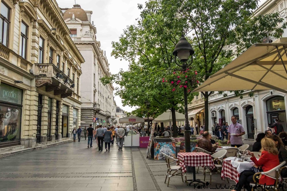 移民塞爾維亞 偵察城市
